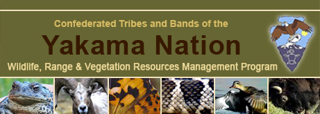 Confederated Tribes and Bands of the Yakama Nation Wildlife, Range & Vegetation Resources Management Program